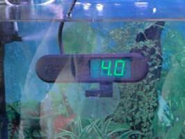 alat ph dalam aquarium