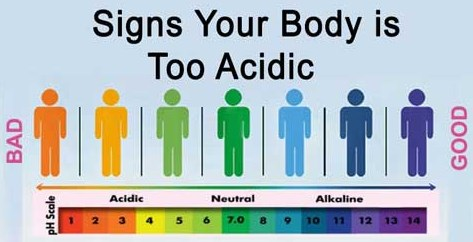 Cara Mengukur pH Tubuh