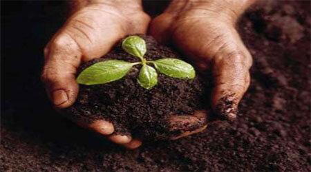 Komposisi dan Karakteristik tanah yang baik