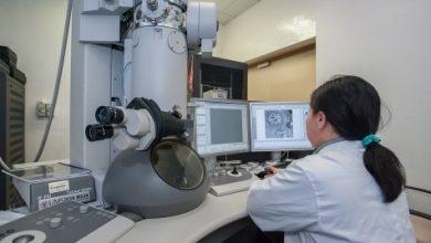 Mikroskop Untuk Melihat Virus